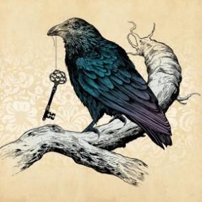 raven-300x300